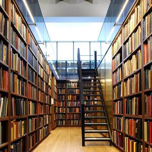 Библиотеки Алзамая